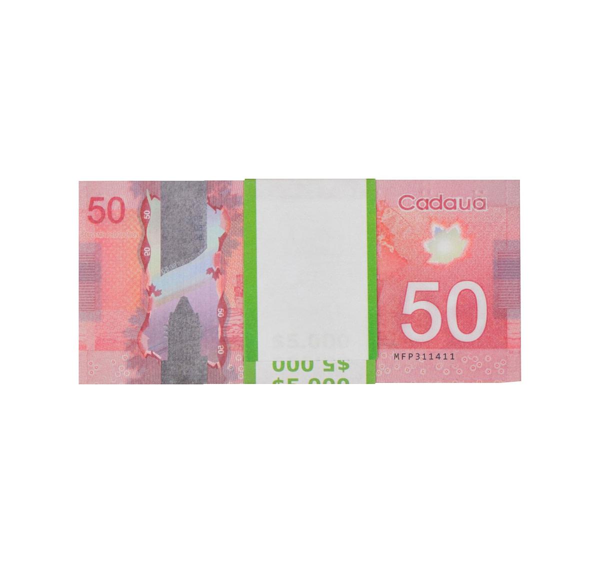 acheter nouvelle 50 dollars canadiens pile de 100 faux billets arrière