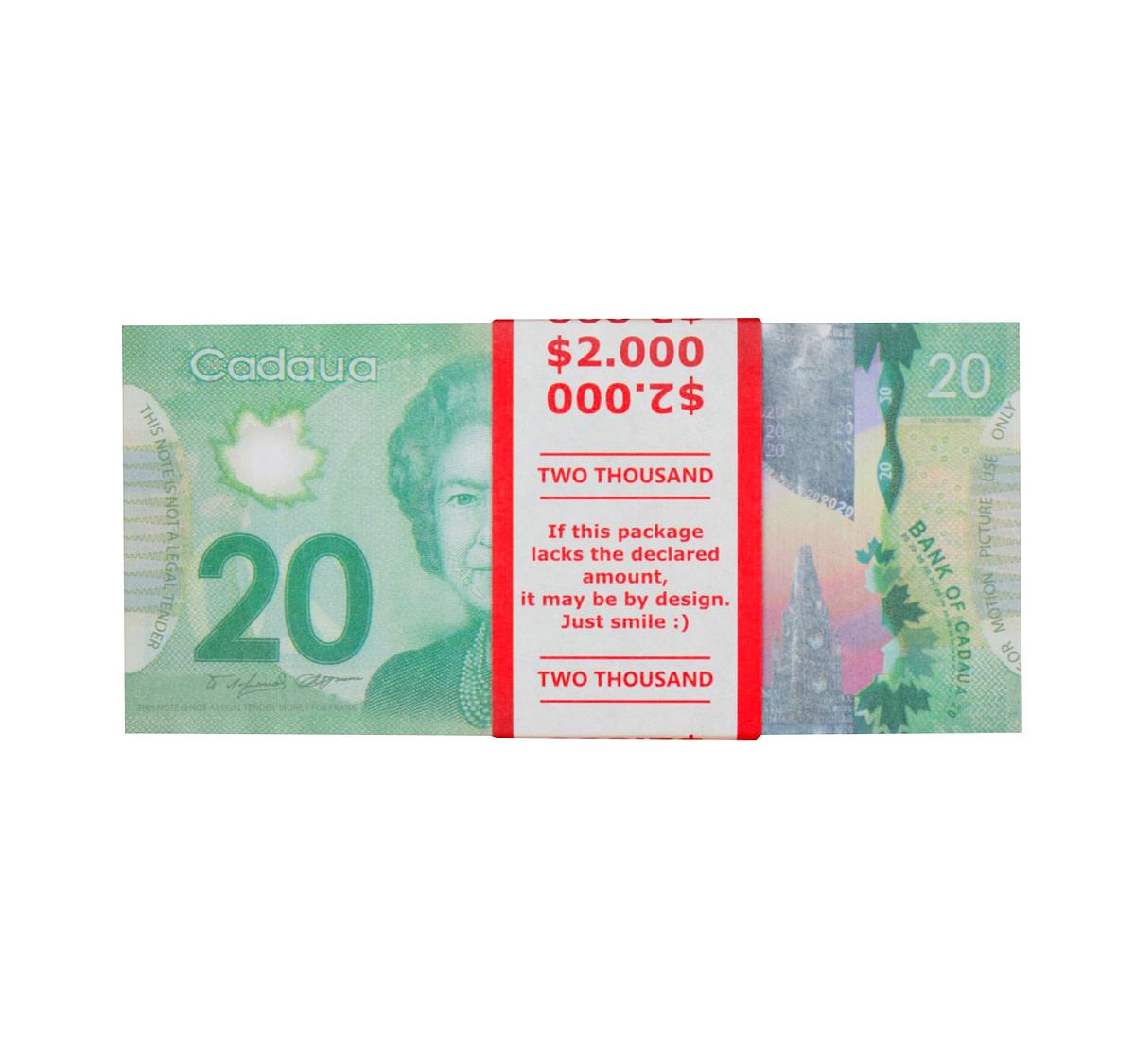 acheter nouvelle 20 dollars canadiens pile de 100 faux billets face avant