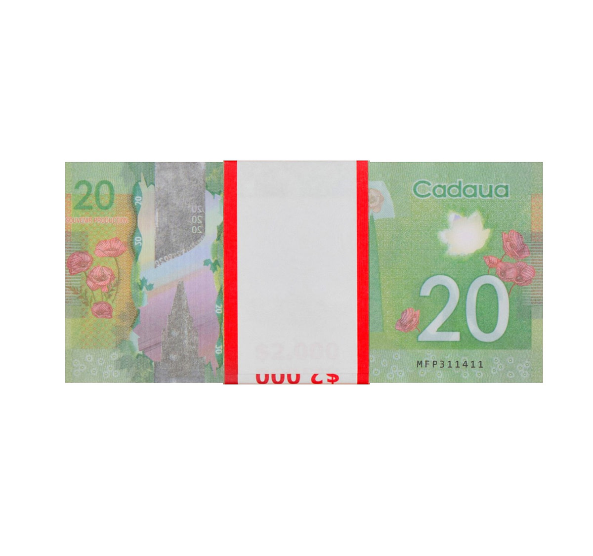 acheter nouvelle 20 dollars canadiens pile de 100 faux billets arrière