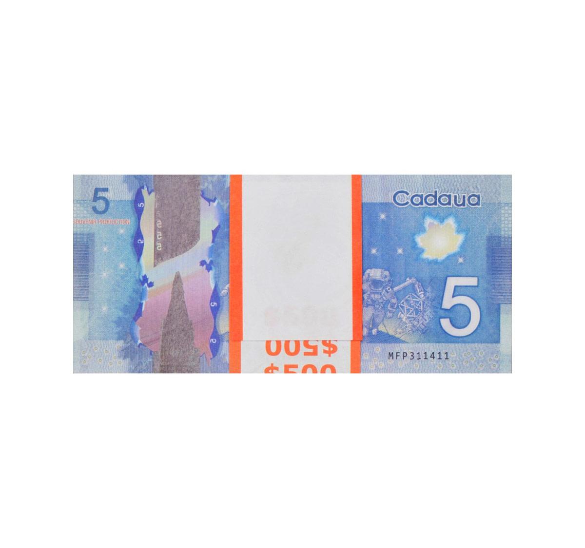 acheter 5 dollars canadiens pile de 100 faux billets arrière
