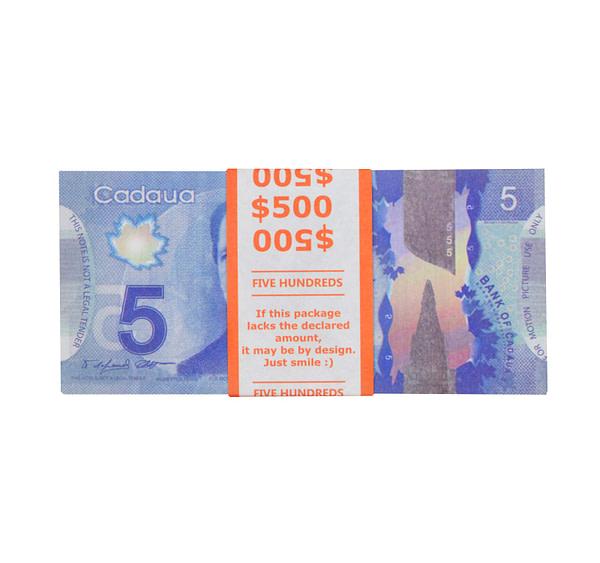acheter 5 dollars canadiens pile de 100 faux billets face avant