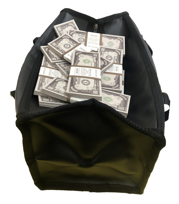 Sac d'argent 1000 dollars américains (100 paquets)