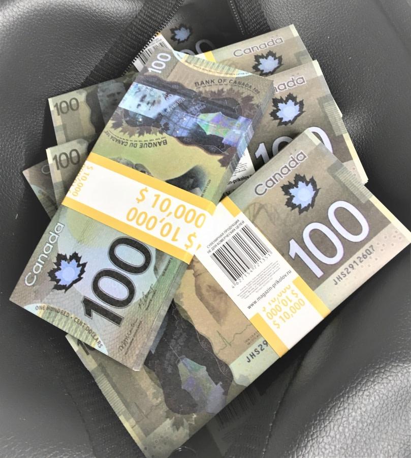 Sac d'argent 100 dollars canadiens (100 paquets)